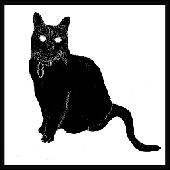 catsynth's Avatar