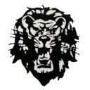 Lionsboy7's Photos