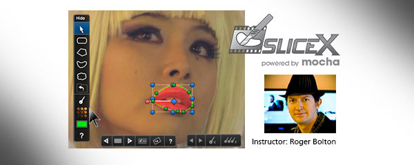 slicex webinar oct 2013