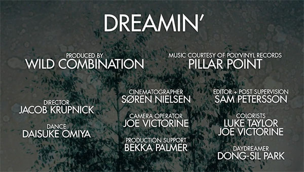 dreamin fcpx user story credits