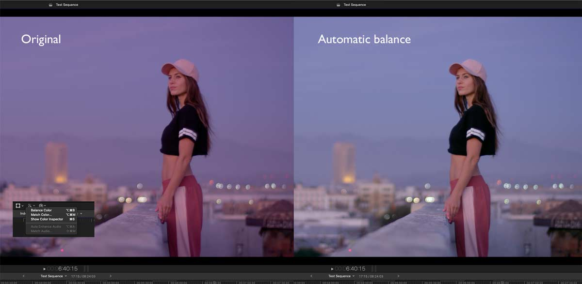 FCP2020013 colortips balance
