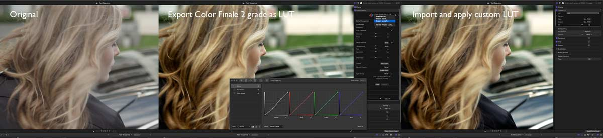 FCP2020013 colortips lut
