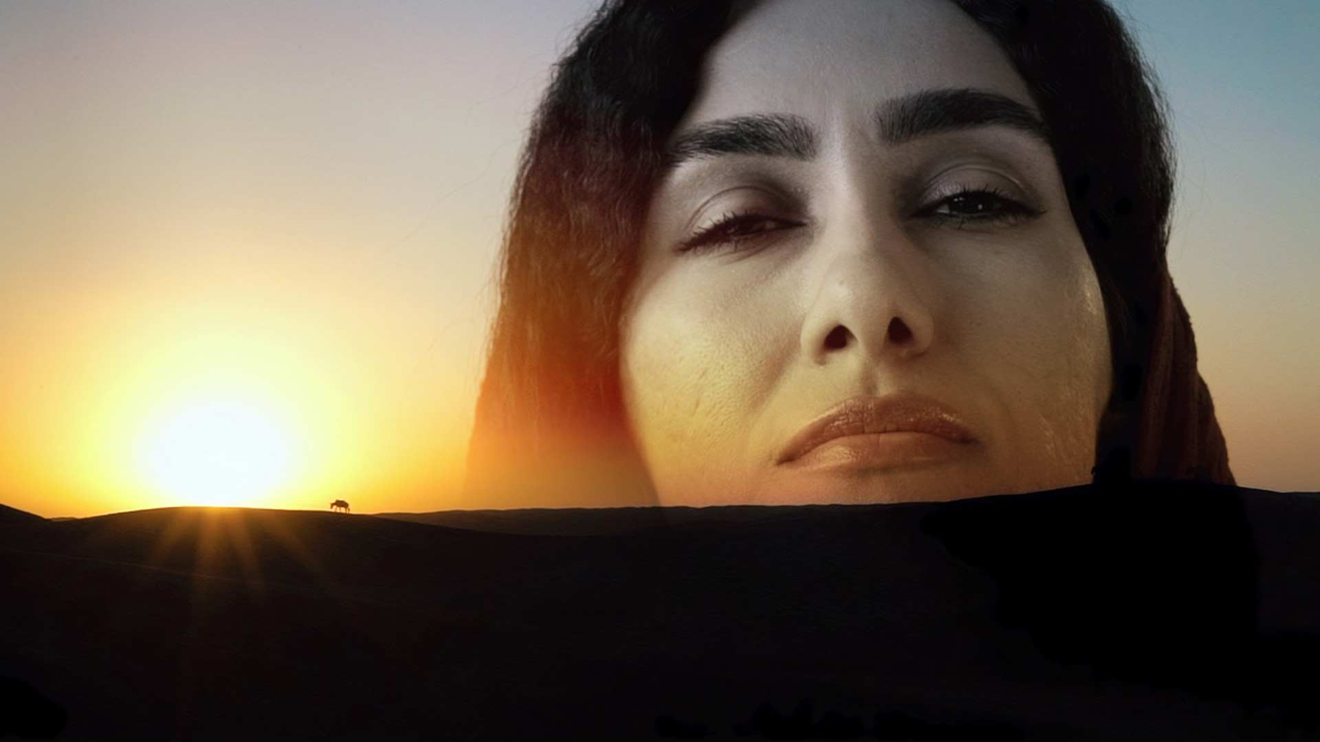 Editing an Indie Feature-doc While in a Bus Through Iran